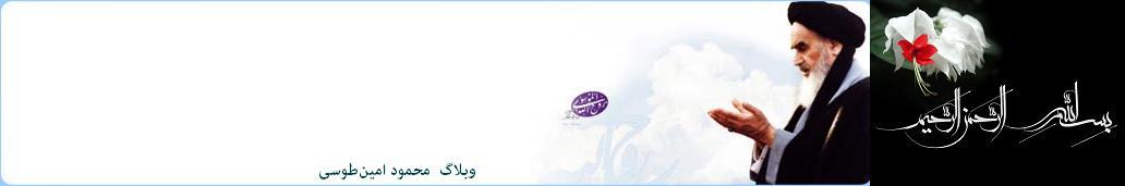 وبلاگ محمود امین طوسی